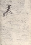 Downhill Skiing - Jay Peak History